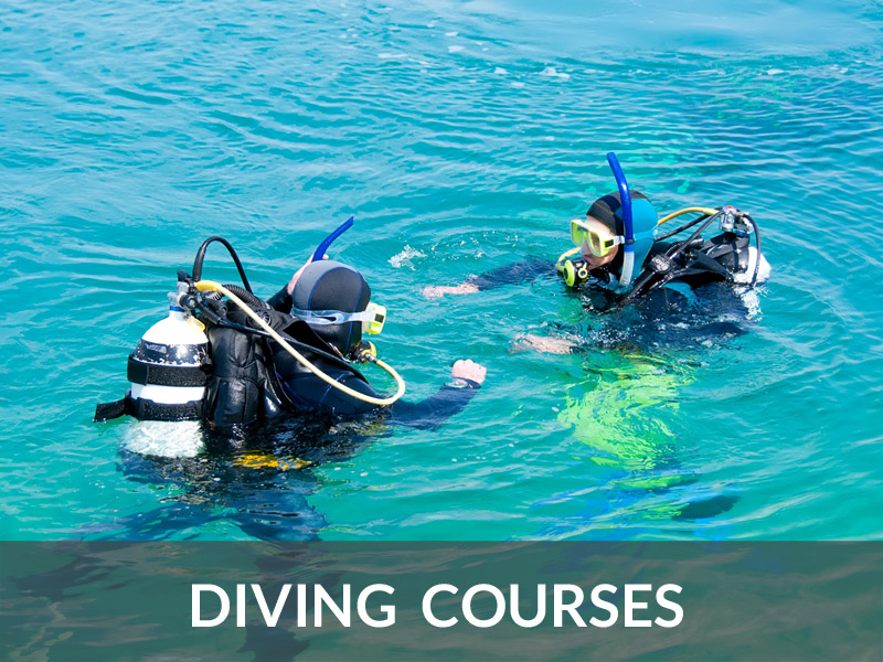 Diving Courses | DIVE LOFT KRK | Croatia